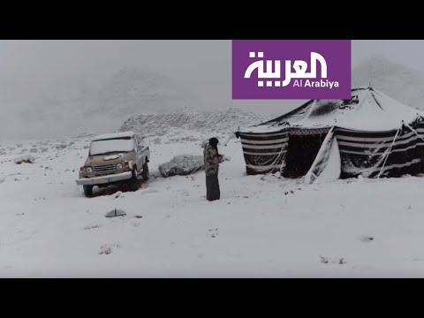 الصور التي التقطها سعوديون للثلوج التي غطت المناطق الشمالية