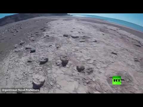 العثور على آثار ديناصور ذي قدمين في بحيرة الأرجنتين